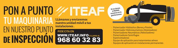 ITEAF Murcia